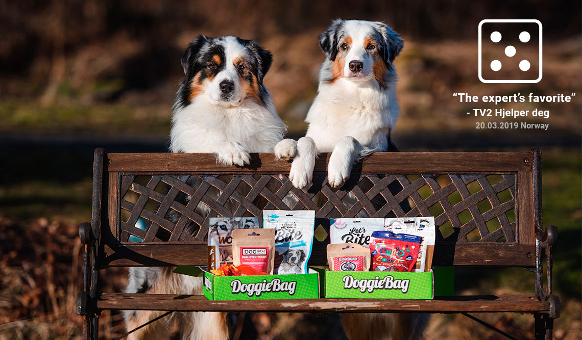 Doggiebag Uk A Monthly Party Pack For